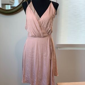 Haute Hippie Silk Dress Blush